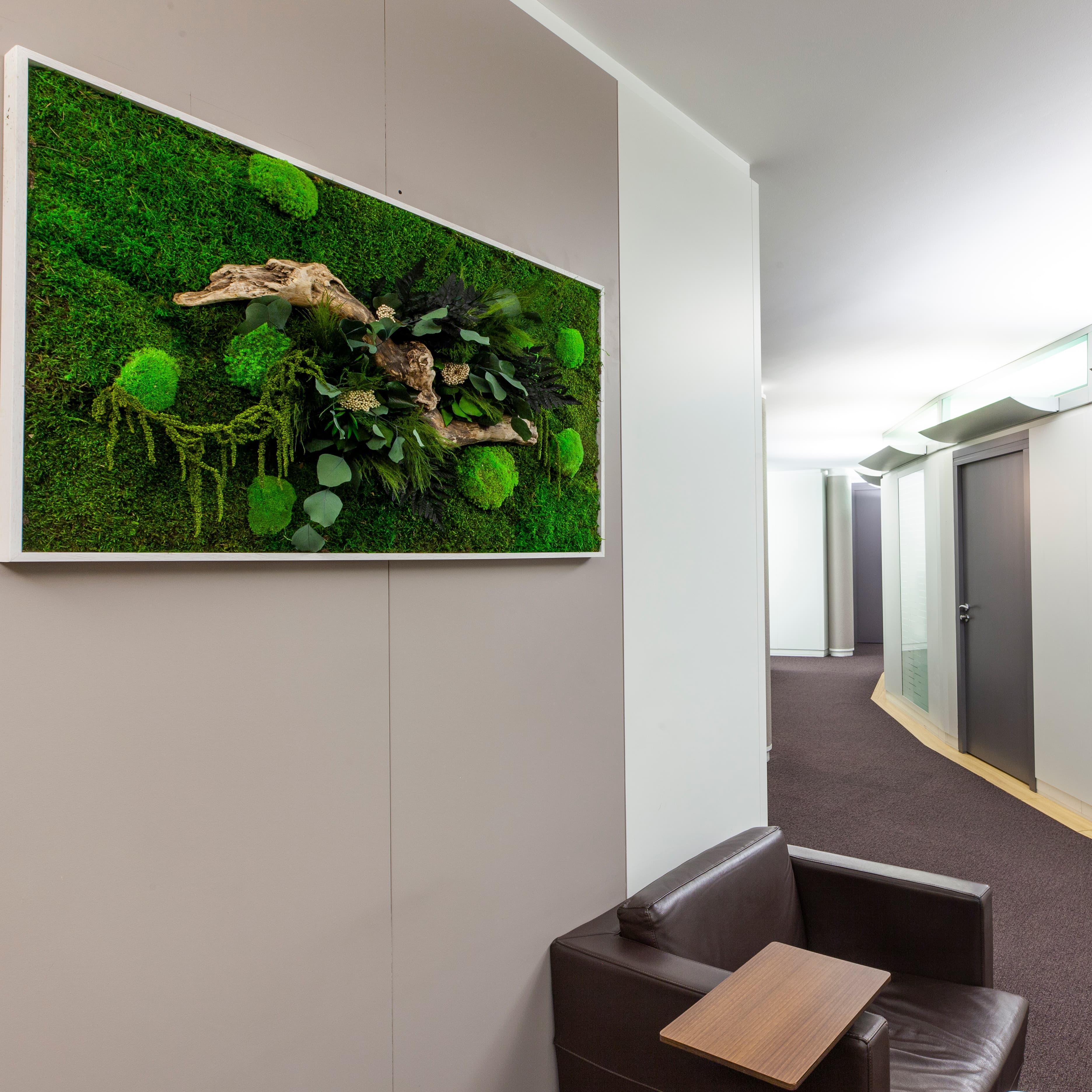 Plantes Pour Tableau Végétal Intérieur tableaux stabilisés - green inside